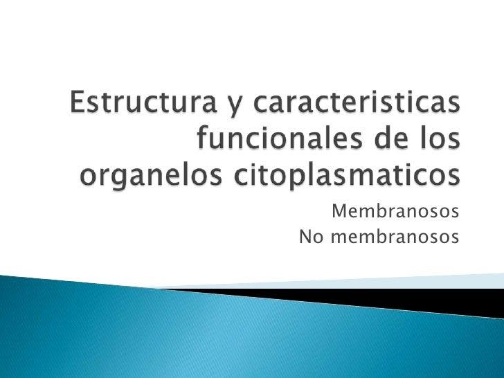 Caracteristicas y estructuras fisiologicas de los organelos citoplasmaticos