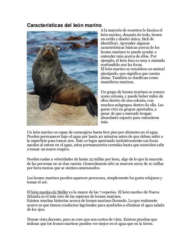 Características del león marino A la mayoría de nosotros le fascina el león marino, después de todo, tienen un estilo y di...