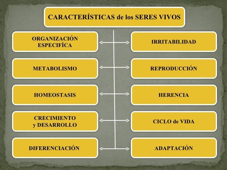 ORGANIZACIÓN ESPECIFÍCA METABOLISMO HOMEOSTASIS CRECIMIENTO y DESARROLLO DIFERENCIACIÓN  IRRITABILIDAD REPRODUCCIÓN HERENC...