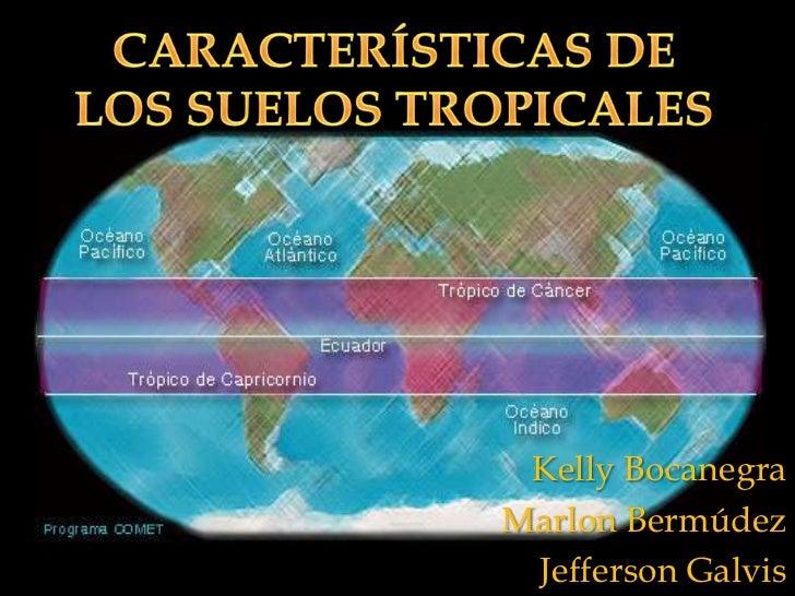 caracter sticas de los suelos tropicales mecanica
