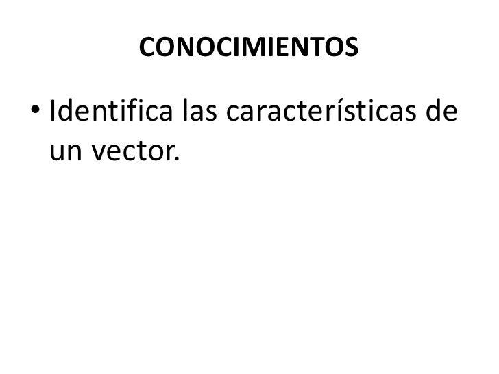 Características de un vector.