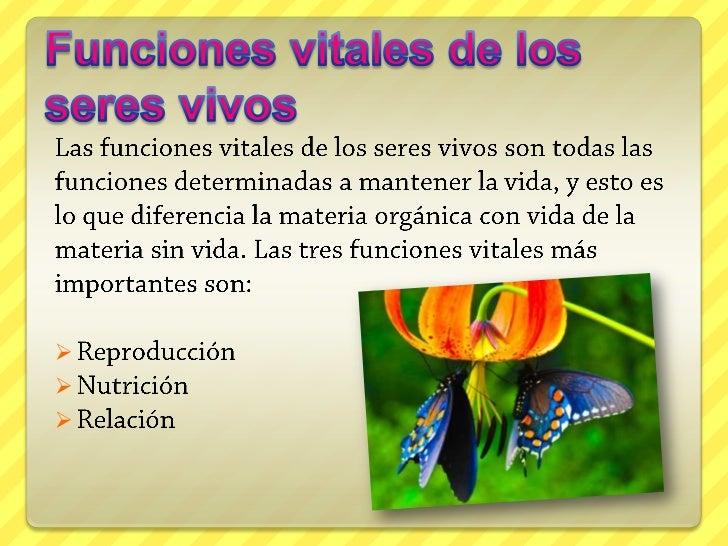 reacciones anabolicas fotosintesis