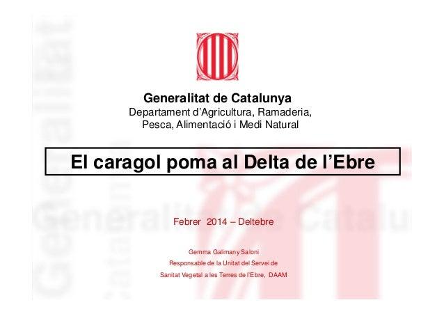 Generalitat de Catalunya El caragol poma al Delta de l'Ebre Departament d'Agricultura, Ramaderia, Pesca, Alimentació i Med...
