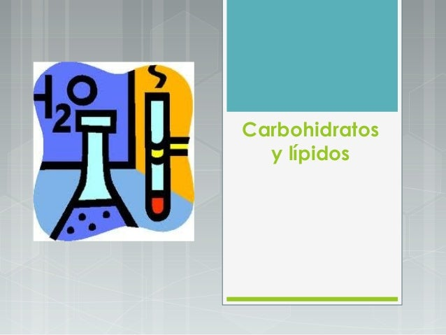 Carbohidratos  y lípidos