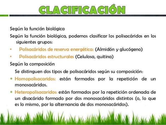 Carbohidratos y su clacificacion for Como estan formados los suelos