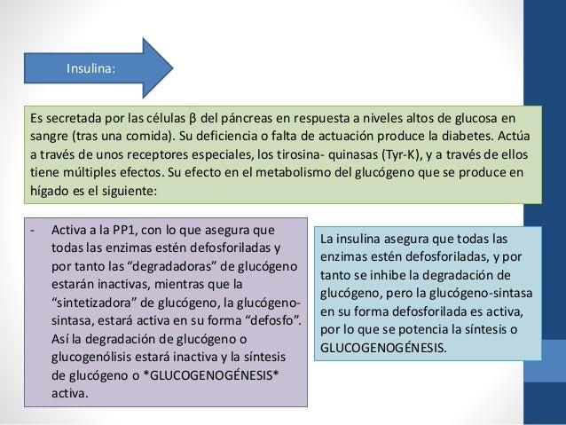 glucosa 6 fosfato deshidrogenasa pdf free