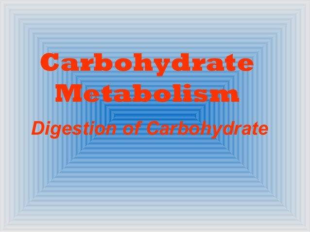 Carbohydrate Metabolism Digestion of Carbohydrate