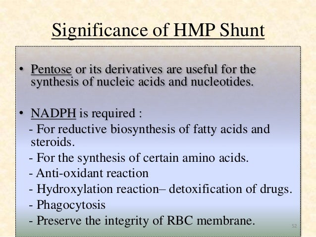 hydroxylation of steroids by microorganisms