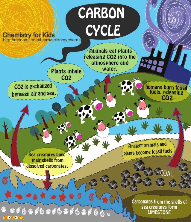 Chemistry for Kids  CARBON CYCLE  http://mocomi.com/learn/science/chemistry/  Plants inhale CO2 CO2 is exchanged between a...