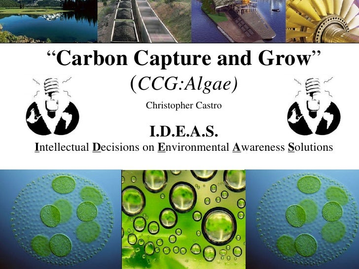 """"""" Carbon Capture and Grow """" ( CCG:Algae) Christopher Castro I.D.E.A.S. I ntellectual  D ecisions on  E nvironmental  A war..."""