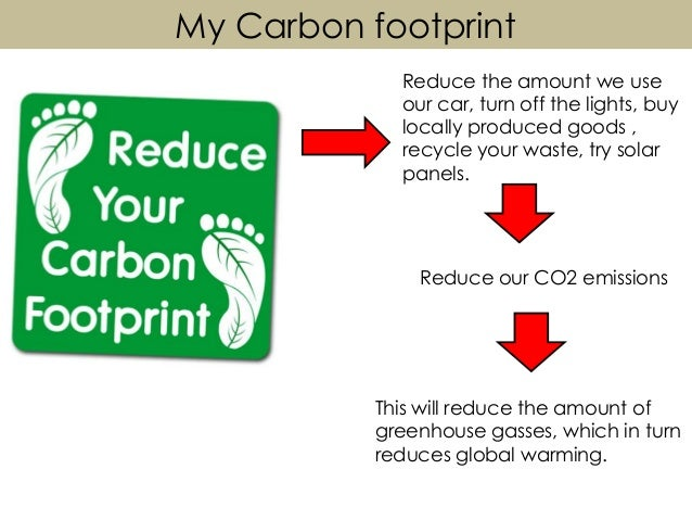 how to reduce my carbon footprint essay