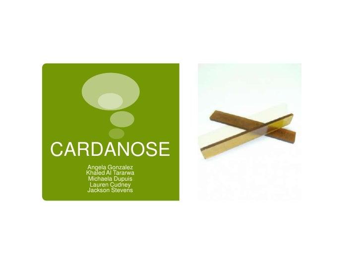 Cardanose FINALFINALFINAL