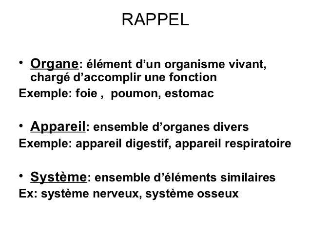 RAPPEL• Organe: élément d'un organisme vivant,  chargé d'accomplir une fonctionExemple: foie , poumon, estomac• Appareil: ...