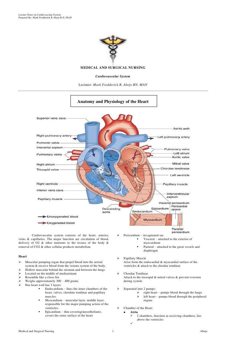 Free Case Studies For Nursing Students Pgbari X Fc2 Com