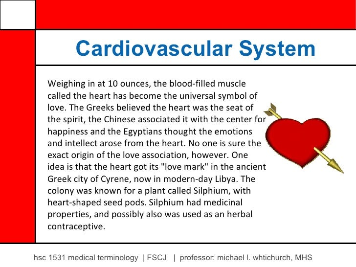 Cardiovascular System   Weighing in at 10 ounces, the blood-filled muscle   called the heart has become the universal symb...