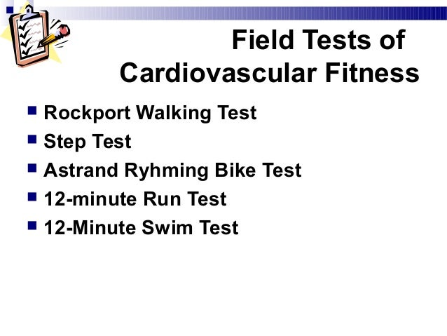 a scientific look at cardiovascular fitness essay