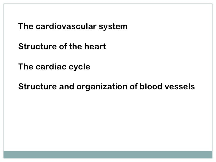 The cardiovascular system Structure of the heart The cardiac cycle Structure and organization of blood vessels Muhammad As...
