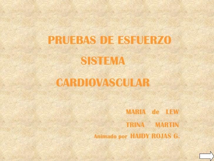 Cardiovascular y Ejercicio interactivo
