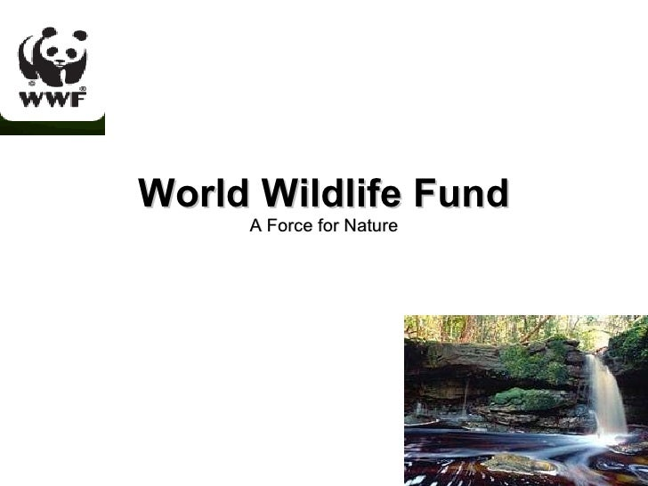 World Wildlife Fund A Force for Nature