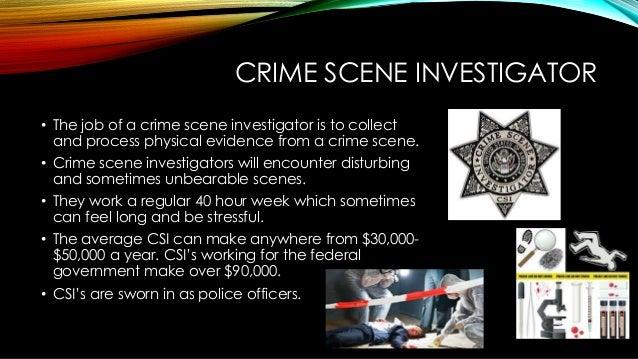 Crime Scene Investigation Essay, Essay Example