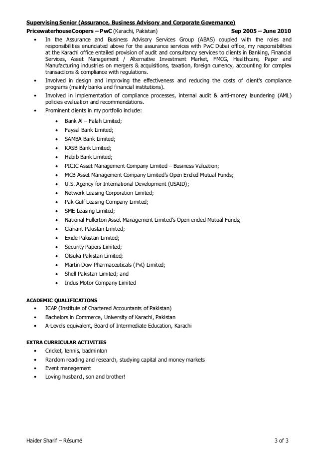 fake resume example 159