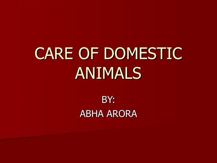 Care of domestic animals