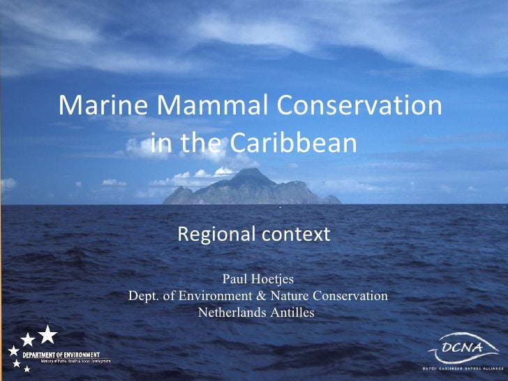 Marine Mammal Conservation  in the Caribbean Regional context Paul Hoetjes Dept. of Environment & Nature Conservation Neth...