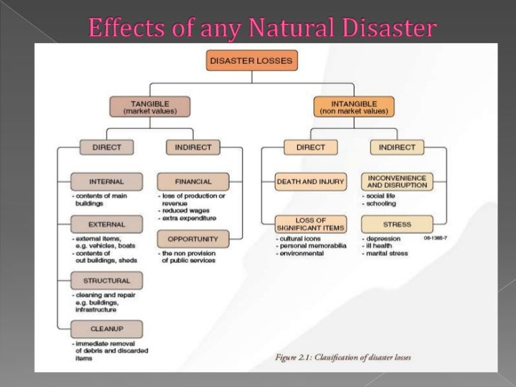 economic impact of natural disasters essay Natural disaster risk management in the philippines: the impacts of natural disasters on the social and economic development of the philippines assess the this funding approach for natural disasters would enable the government to.