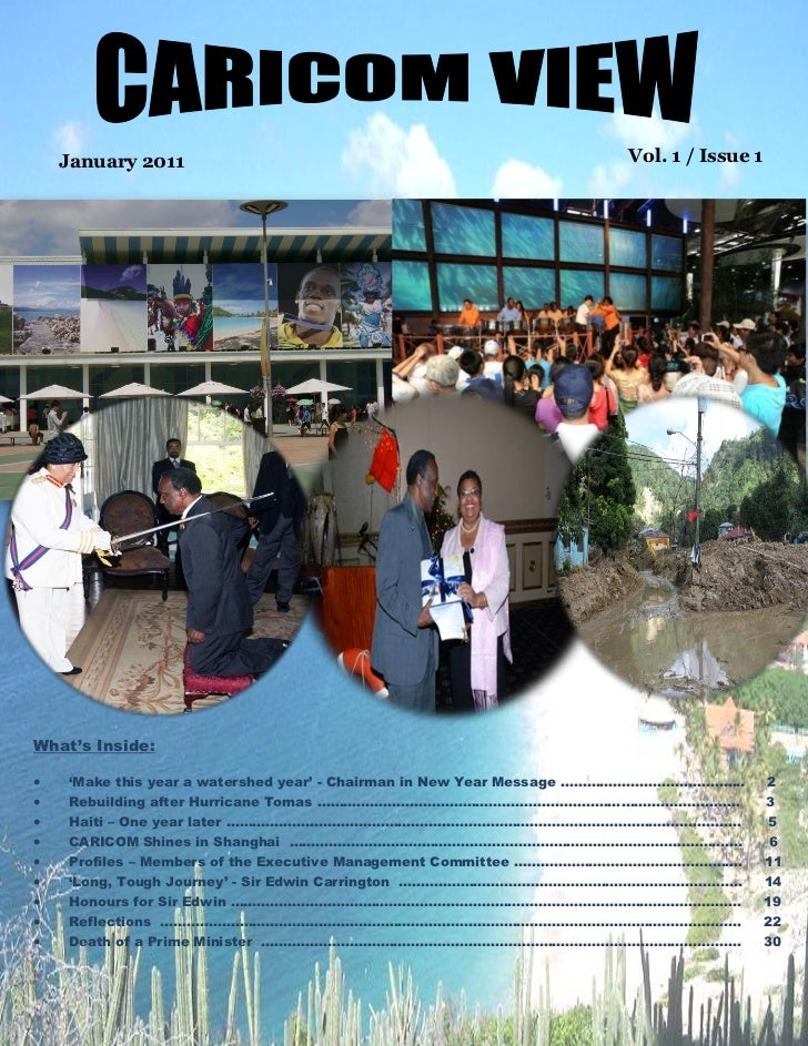 "January 2011                                                       Vol. 1 / Issue 1What""s Inside:   ""Make this year a wat..."