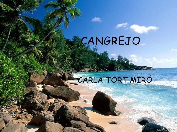 CANGREJO CARLA TORT MIRÓ