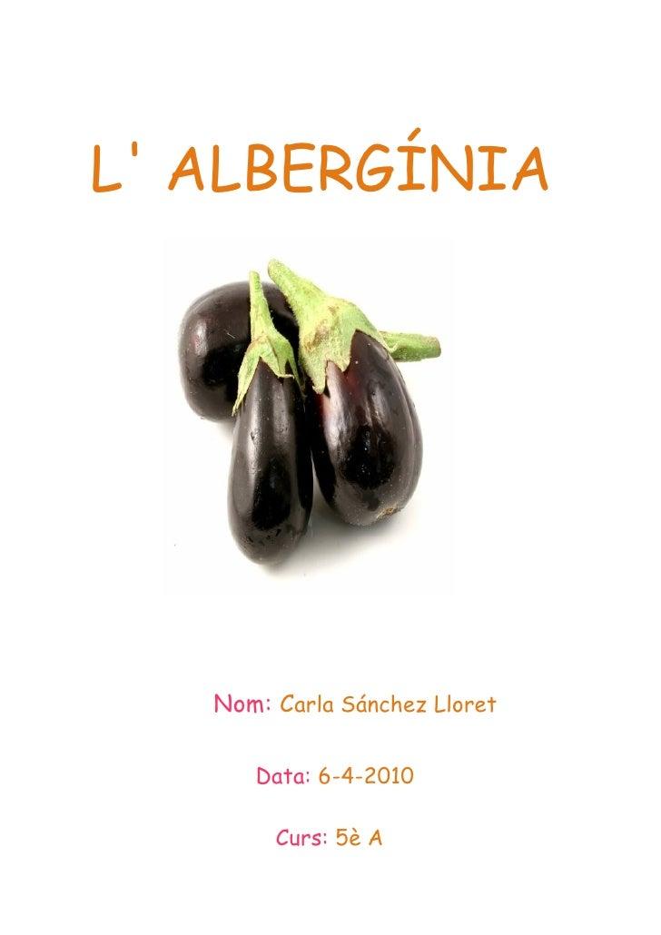 L' ALBERGÍNIA        Nom: Carla Sánchez Lloret        Data: 6-4-2010          Curs: 5è A