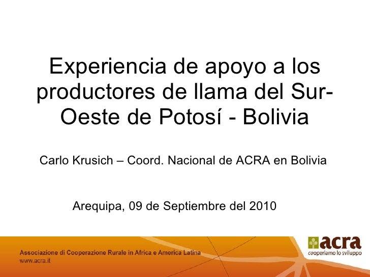 Experiencia de apoyo a los productores de llama del Sur-Oeste de Potosí - Bolivia Arequipa, 09 de Septiembre del 2010 Fina...