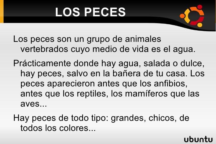 LOS PECES <ul><li>Los peces son un grupo de animales vertebrados cuyo medio de vida es el agua.