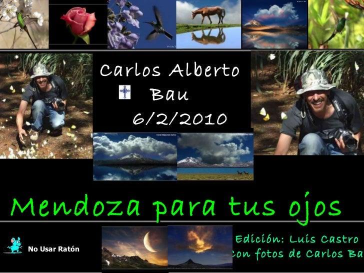 Carlos alberto bau -memorial