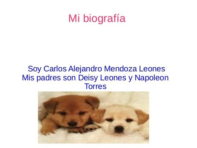 Mi biografía Soy Carlos Alejandro Mendoza Leones Mis padres son Deisy Leones y Napoleon Torres