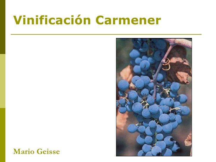 Mario Geisse  Vinificación Carmener