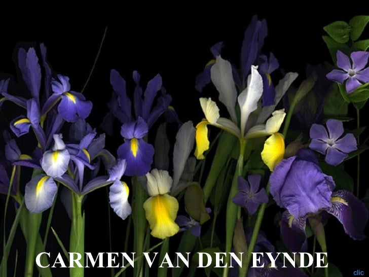 CARMEN VAN DEN EYNDE   clic