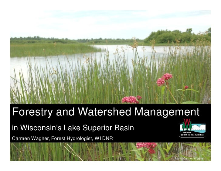 Forestry and Watershed Management in Wisconsin's Lake Superior Basin Carmen Wagner, Forest Hydrologist, WI DNR            ...
