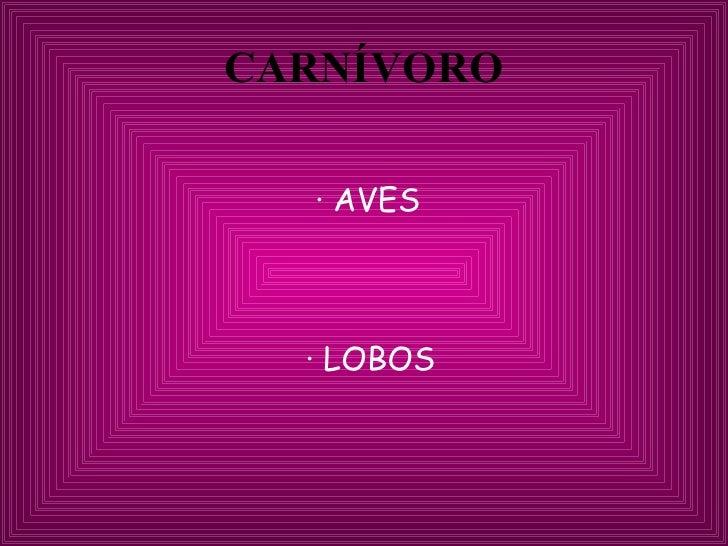 CARNÍVORO <ul><li>· AVES </li></ul><ul><li>·   LOBOS </li></ul>