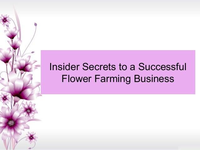 Insider secrets to a successful flower farming business - Successful flower growing business ...