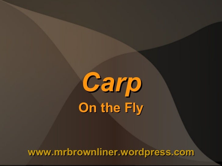Carp on The Fly