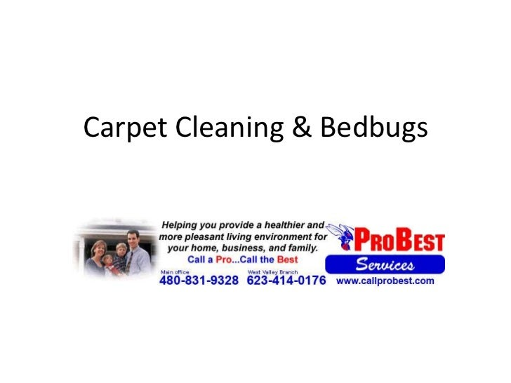 Carpet cleaning & bedbugs