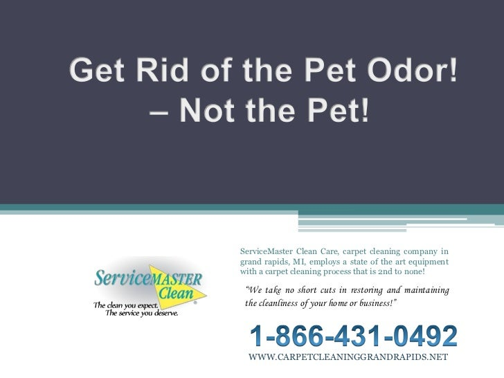 Get Rid of the Pet Odor!<br /> – Not the Pet!<br />ServiceMaster Clean Care, carpet cleaning company in grand rapids, MI, ...