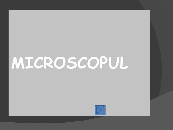 <ul><li>MICROSCOPUL </li></ul>