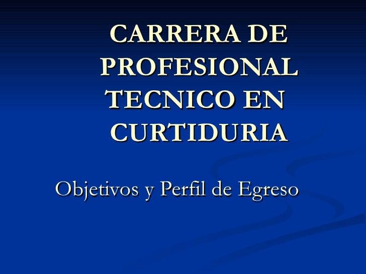 CARRERA DE PROFESIONAL TECNICO EN  CURTIDURIA Objetivos y Perfil de Egreso