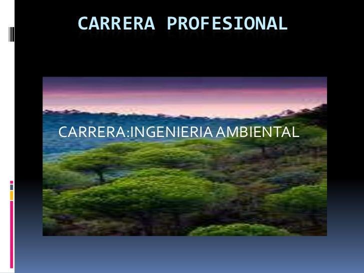 CARRERA PROFESIONAL <br />CARRERA:INGENIERIA AMBIENTAL<br />
