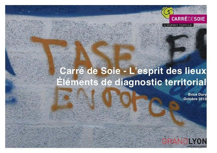 Carré de Soie - L'esprit des lieuxÉléments de diagnostic territorial                              Brice Dury              ...