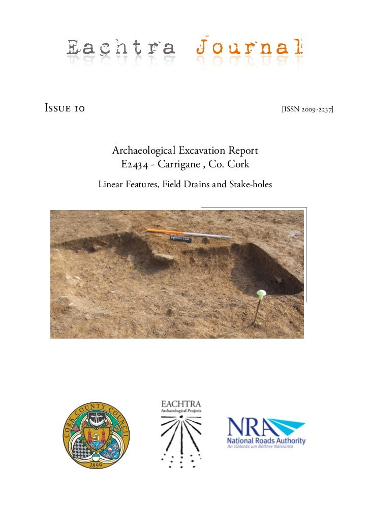 Archaeological Report - Carrigane 1, Co. Cork (Ireland)