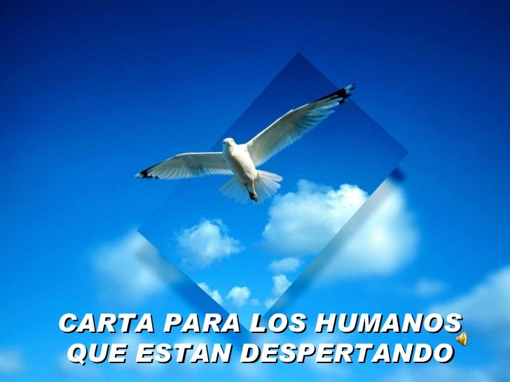 Carta Humanos Despertando