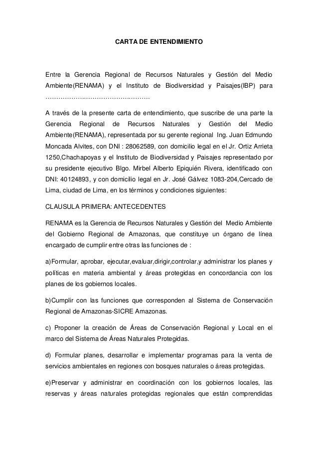 CARTA DE ENTENDIMIENTOEntre la Gerencia Regional de Recursos Naturales y Gestión del MedioAmbiente(RENAMA) y el Instituto ...